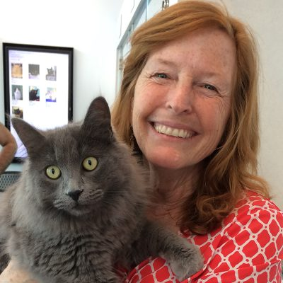 Veterinary Services at Marin Humane