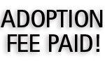 AdoptionFeePaidSBPhotoTemplate