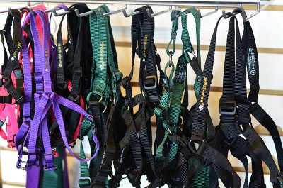 SENSE-ation harnesses at Animal Outfitters
