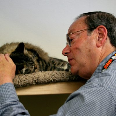 Volunteer at Marin Humane