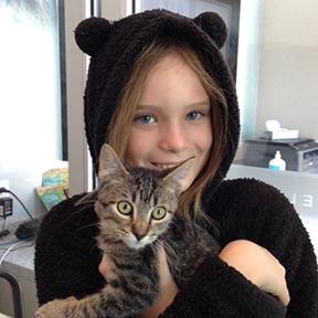Adoptions at Marin Humane's Kitty Corner