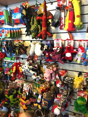 Find pet toys, leashes, and more at our pet store in Novato.