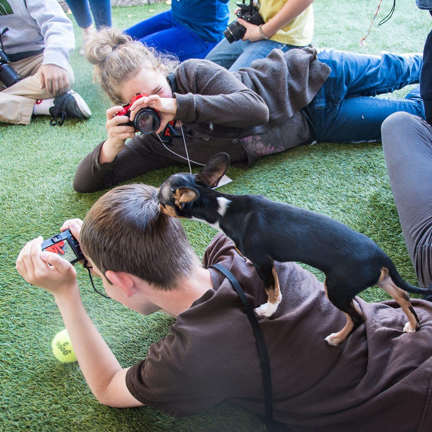 Animal Photography for Kids - FULL @ Marin Humane