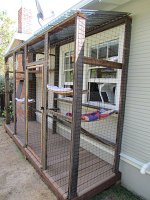 how to build a large outdoor cat enclosure
