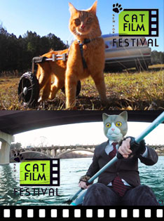 New York Cat Film Festival 2018 @ Lark Theater