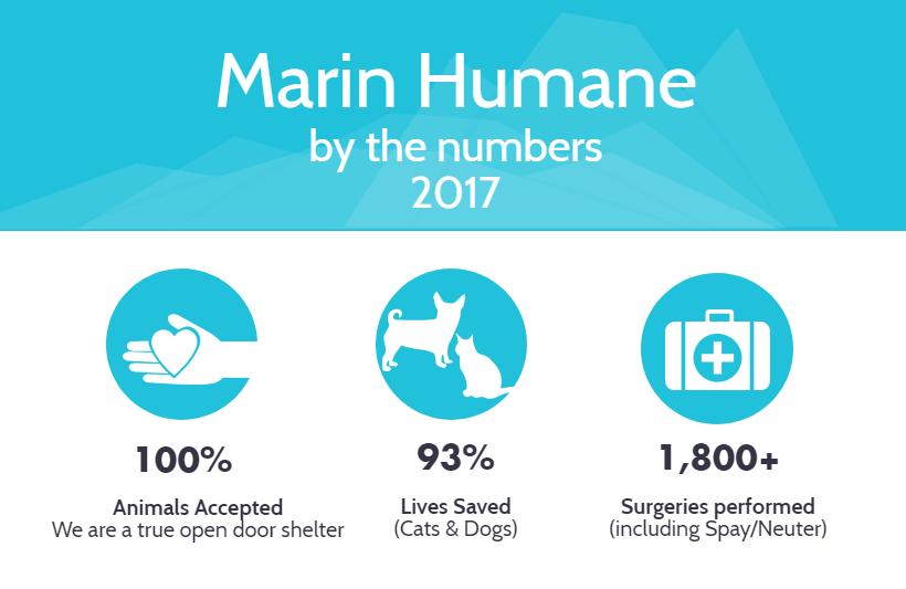 Marin Humane Shelter Statistics