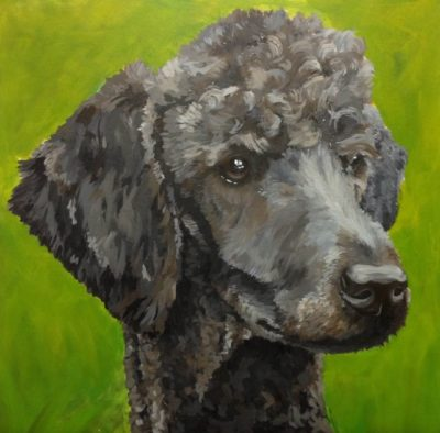 Paint Your Pet for Kids @ Marin Humane