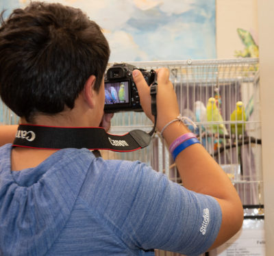 CANCELLED Animal Photography for Kids @ Marin Humane